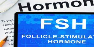 Follikel Stimulierendes Hormon (FSH) und dessen Rolle für die Fruchtbarkeit 3
